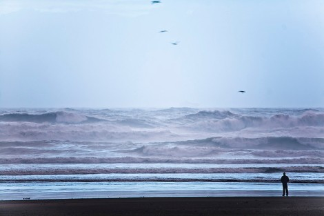 ocean_david_sifry