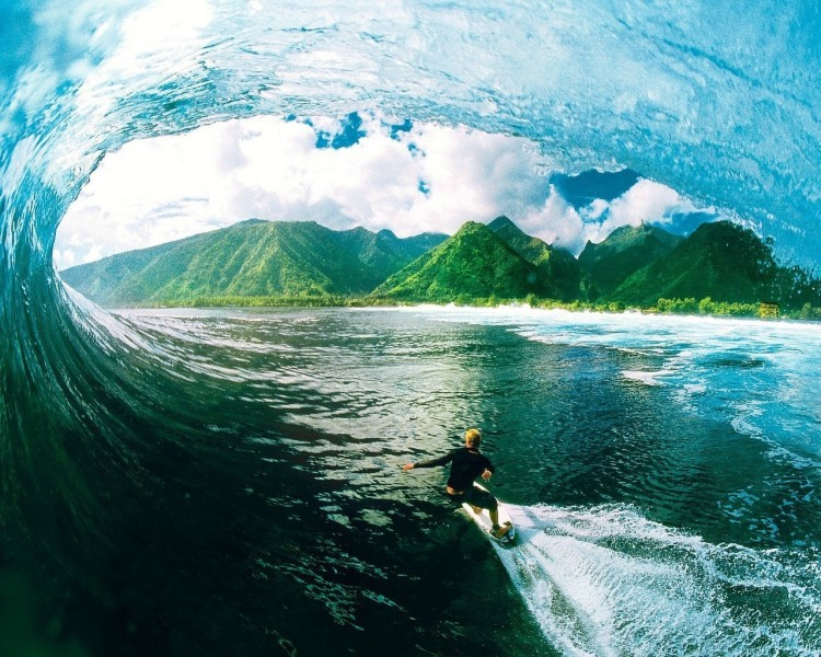 surfing_pic