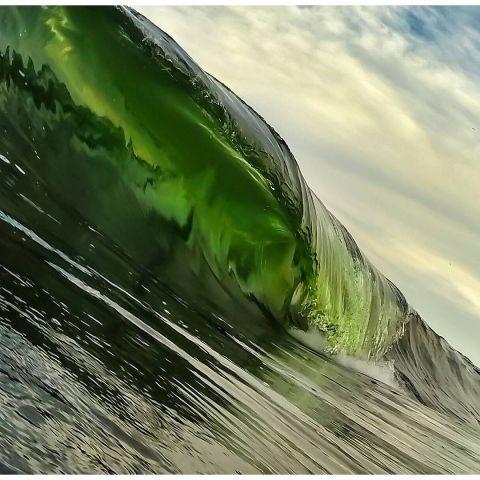 green wave_Clark Little