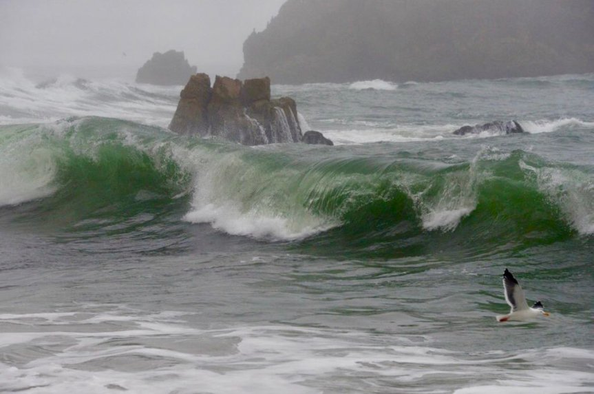 Pic o' the Week, World Ocean Day Edition: Emerald OceanDreamscape